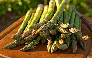 Fresh asparagus piled on a board in afternoon sunlight