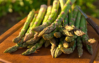 A handful of fresh asparagus lying on a picnic table