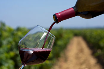 Red wine being poured into a glass against a vineyard background