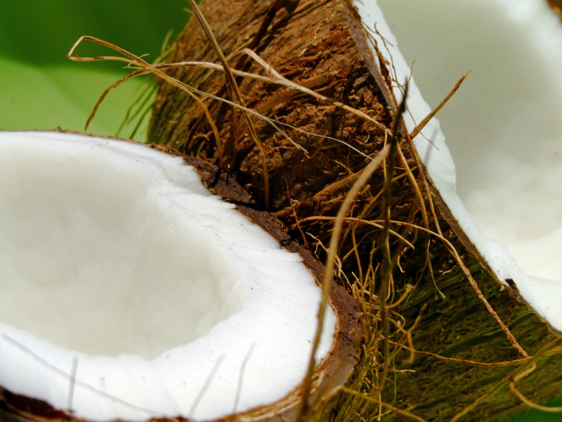 a fresh coconut, cut in half to show the coconut flesh inside