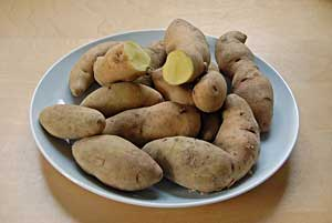 Long White Potatoes