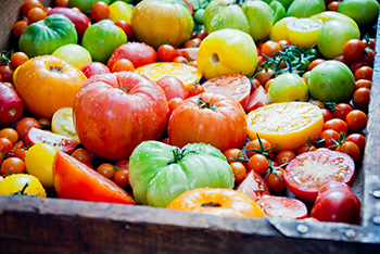 a basket of tomatoes of many different colors, including red, yellow, orange, and green