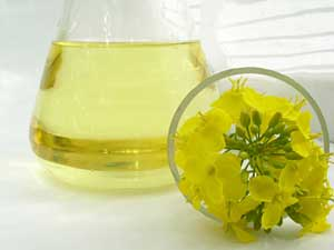 Rapeseed (Canola) Oil and Rape Flowers