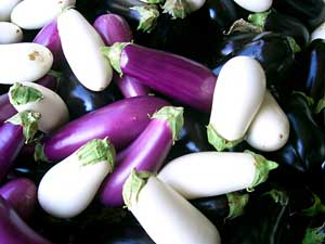 Three Types of Eggplant