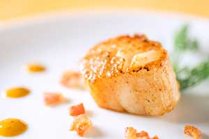 Coumadin Safe Scallop Recipes